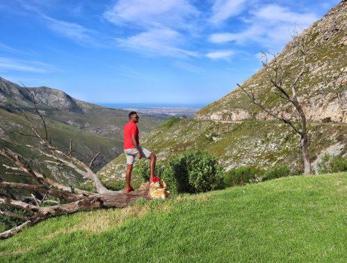 Western Cape Experiences